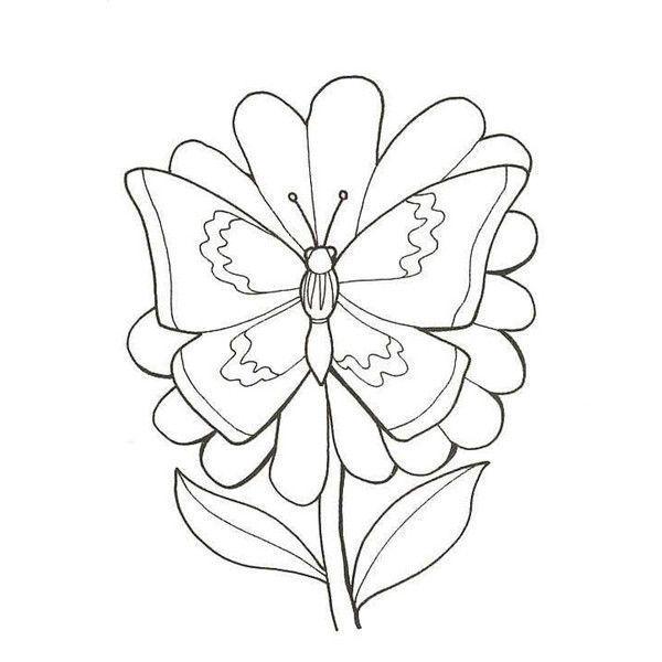 Coloriage printemps - Dessin de petit papillon ...