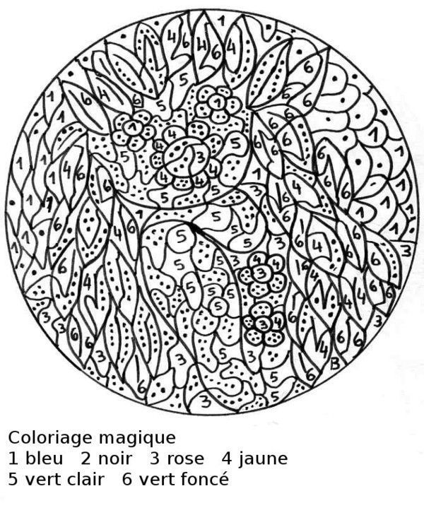 Coloriage Codee.Coloriage