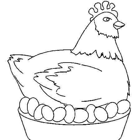 Poule - Dessin poules ...